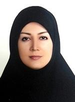 Dr. Naimeh Naseri
